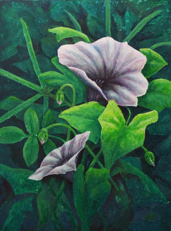 103) Ackerwinde (Acryl auf Leinwand 50 x 70 cm)
